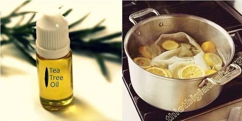 Diệt rệp bằng cách sử dụng tinh dầu cam, chanh hoặc trà chanh