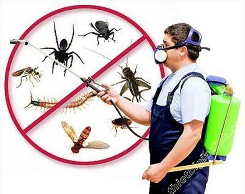 Dùng hóa chất diệt muỗi sẽ mang lại mùi khó chịu