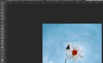 nhung-cach-cat-chu-trong-photoshop-1.2