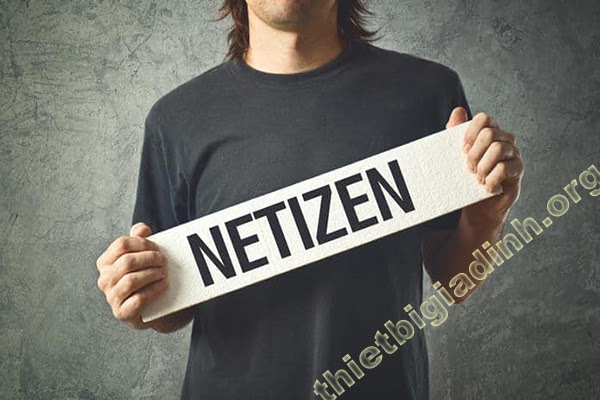 Netizen là gì
