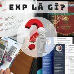 EXP là gì, exp có nghĩa là gì
