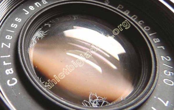 lens bị rễ tre