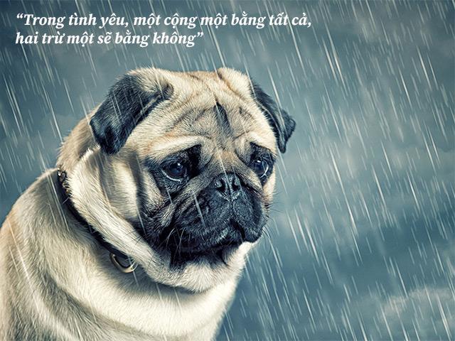 lời an ủi ngọt ngào cho bạn bè